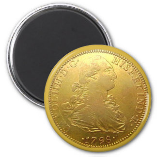 Faux Spanish Gold Doubloon Heads Magnet