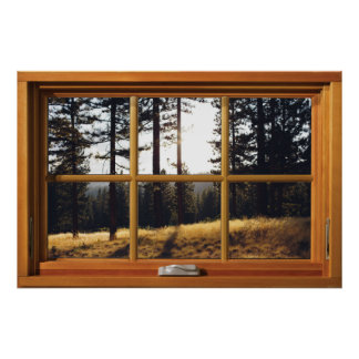 Faux Wooden Window Illusion - Autumn Pine Trees Poster