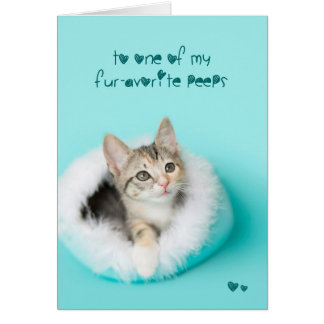 Favorite peep Kitten Easter Card