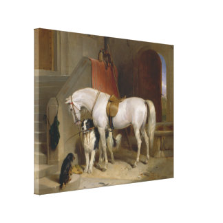 Favourites, the Property of H.R.H. Prince George Canvas Print