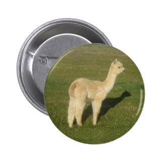 Fawn alpaca buttons