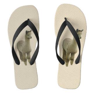 Fawn Alpaca Flip Flops