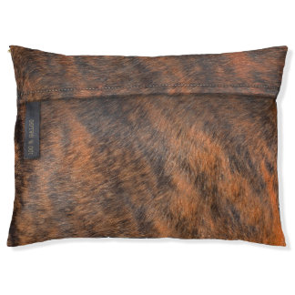 Fawn-coloured cushion of outside for greyhound