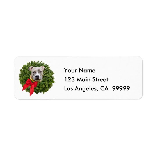 Fawn Coloured PitBull in Christmas Wreath & Red