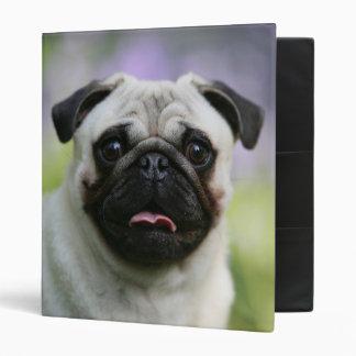 Fawn Pug on Alert Vinyl Binder