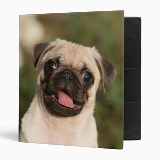 Fawn Pug Puppy Panting Binders