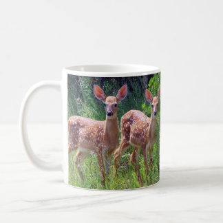 Fawn Twins in the Hawkweed Mug