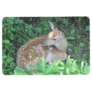 Fawn Waiting For Mother Floor Mat