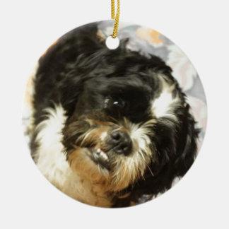 FB_IMG_1481505521015 Shitzu dog Ceramic Ornament