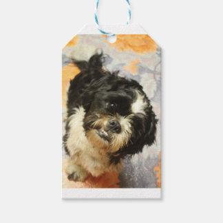 FB_IMG_1481505521015 Shitzu dog Gift Tags