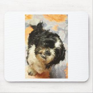 FB_IMG_1481505521015 Shitzu dog Mouse Pad