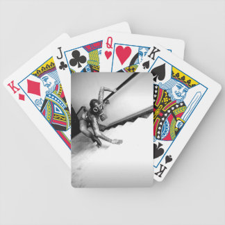 FB_IMG_1496899988252 BICYCLE PLAYING CARDS