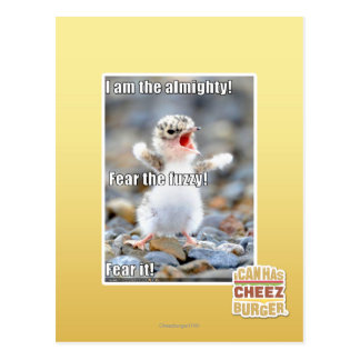 Fear the Fuzzy! Postcard