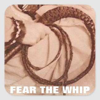 FEAR THE WHIP SQUARE STICKER