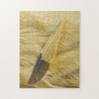 Feather on the Sand Jigsaw Puzzle