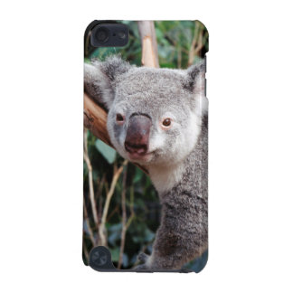 Featherdale Wildlife Park, Koala Bears iPod Touch (5th Generation) Cover