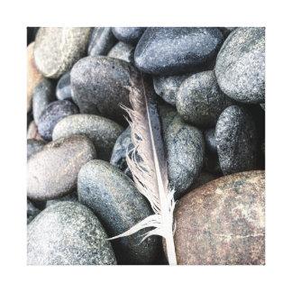 Feathered Friend by Cari Johnson Canvas Print