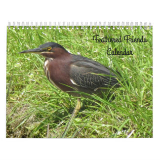 Feathered Friends Calendar (encore edition)