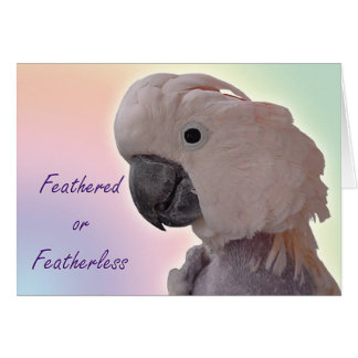 Featherless Card