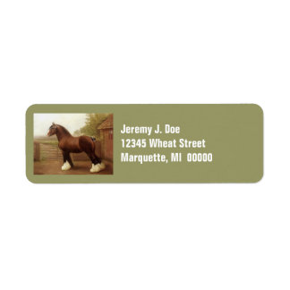 Feathers Clydesdale Draft Horse Address Labels