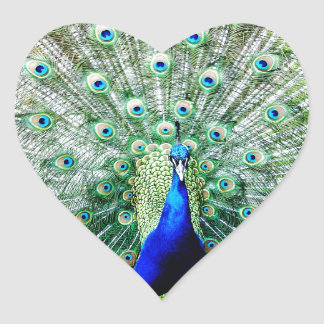Feathers Heart Sticker