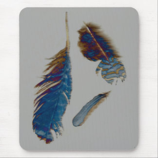 Feathers on a windy day.... mouse pad