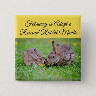 February is Adopt a Rescued Rabbit Month Button