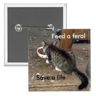 """""""Feed a Feral, Save a Life"""" feral kitten button"""