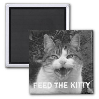 Feed the Kitty Crabby Cat Magnet