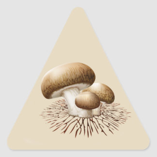 Feed the Mycelia Triangle Stickers (20)