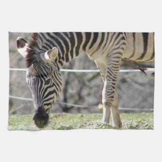 Feeding Zebras Kitchen Towel