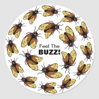 Feel the Buzz Cicada Magicicada Colorful Party Classic Round Sticker