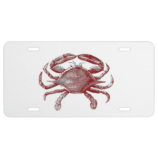 Feeling Crabby Red Pencil Crab Sketch License Plate