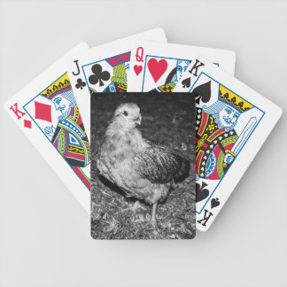 Felicia Bicycle Playing Cards
