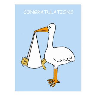 Félicitations, nouveau chat d'animal familier/bébé carte postale
