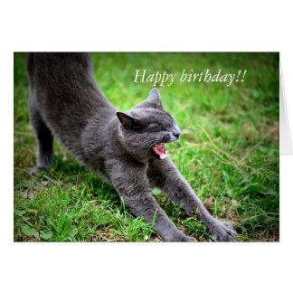 Feline Birthday Herald Card