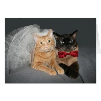 Feline Bride and Groom Card