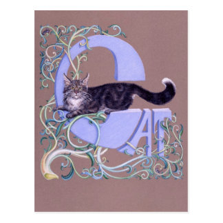 Felis Illumines Postcard