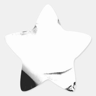 Felix Foster Star Sticker