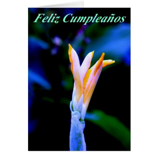 Feliz Cumpleanos Greeting Card