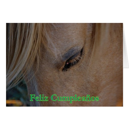 Feliz Cumpleaños Spanish Birthday with horse Greeting Cards