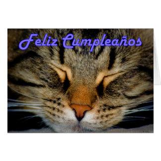 Feliz Cumpleaños Spanish Birthday with kitty cat Greeting Card