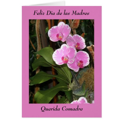 Feliz Dia de las madres Comadre Greeting Cards | Zazzle