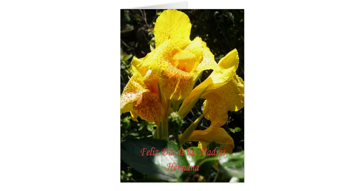Feliz dia de las madres Hermana Card | Zazzle.ca