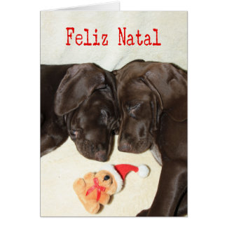 Feliz Natal  German Pointer Sisters Greeting Card