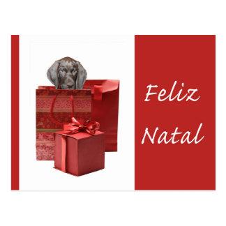 Feliz Natal german shorthaired pointer Chistmas Postcard