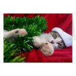 Feliz Navidad 3 Greeting Card