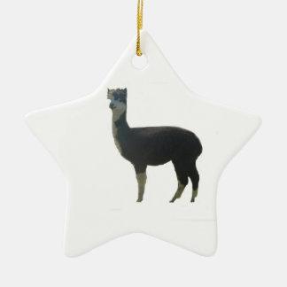 Female alpaca ceramic star ornament