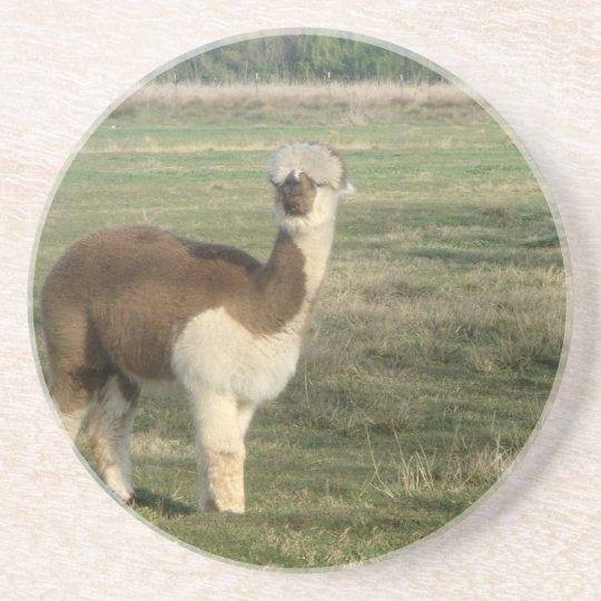 Female alpaca coaster