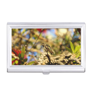 Female Anna's Hummingbird, California, Photo Case For Business Cards